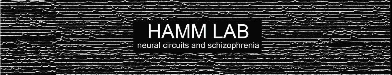 Hamm Lab